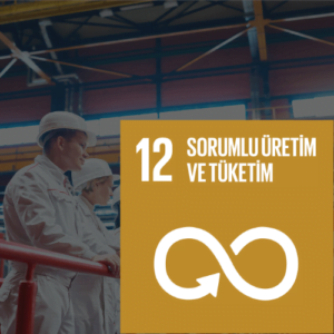 SDG 12 Sürdürülebilir Kalkınma Amacı 12 - Sorumlu Üretim ve Tüketim