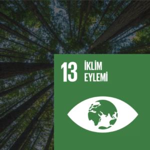 SDG 13 Sürdürülebilir Kalkınma Amacı 13 - İklim Eylemi