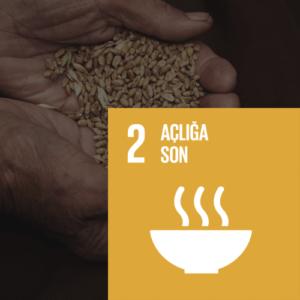 SDG 2 Sürdürülebilir Kalkınma Amacı 2 - Açlığa Son