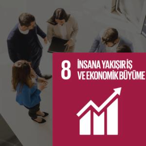 SDG 8 Sürdürülebilir Kalkınma Amacı 8 - İnsana Yakışır İş ve Ekonomik Büyüme