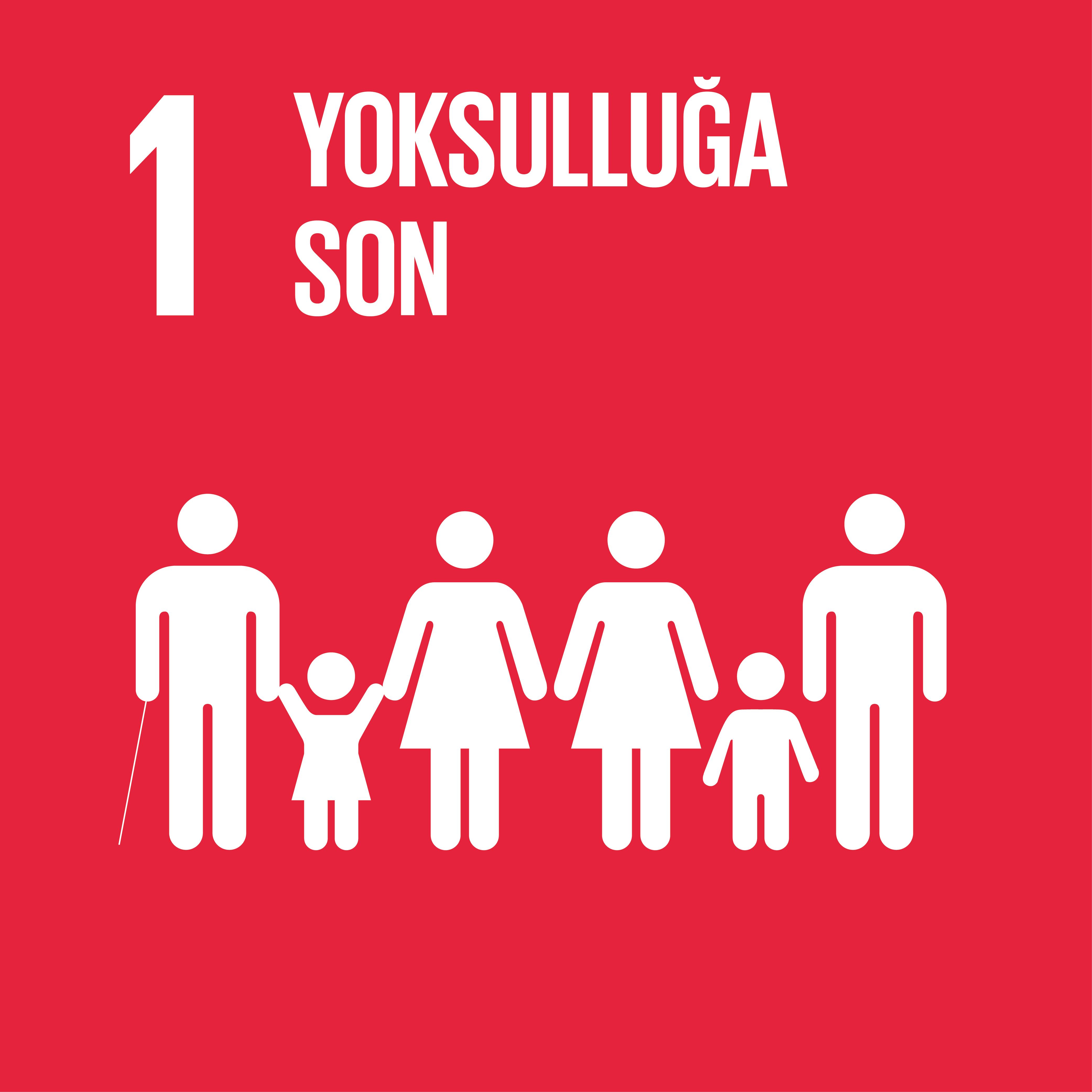 SDG 1 Sürdürülebilir Kalkınma Amacı 1 - Yoksulluğa Son