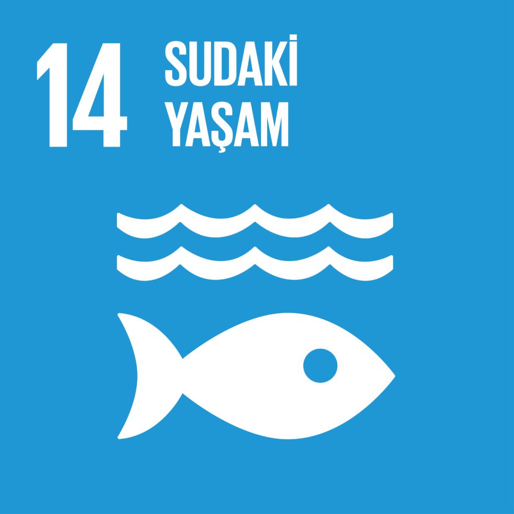 SDG 14 Sürdürülebilir Kalkınma Amacı 14 - Sudaki Yaşam