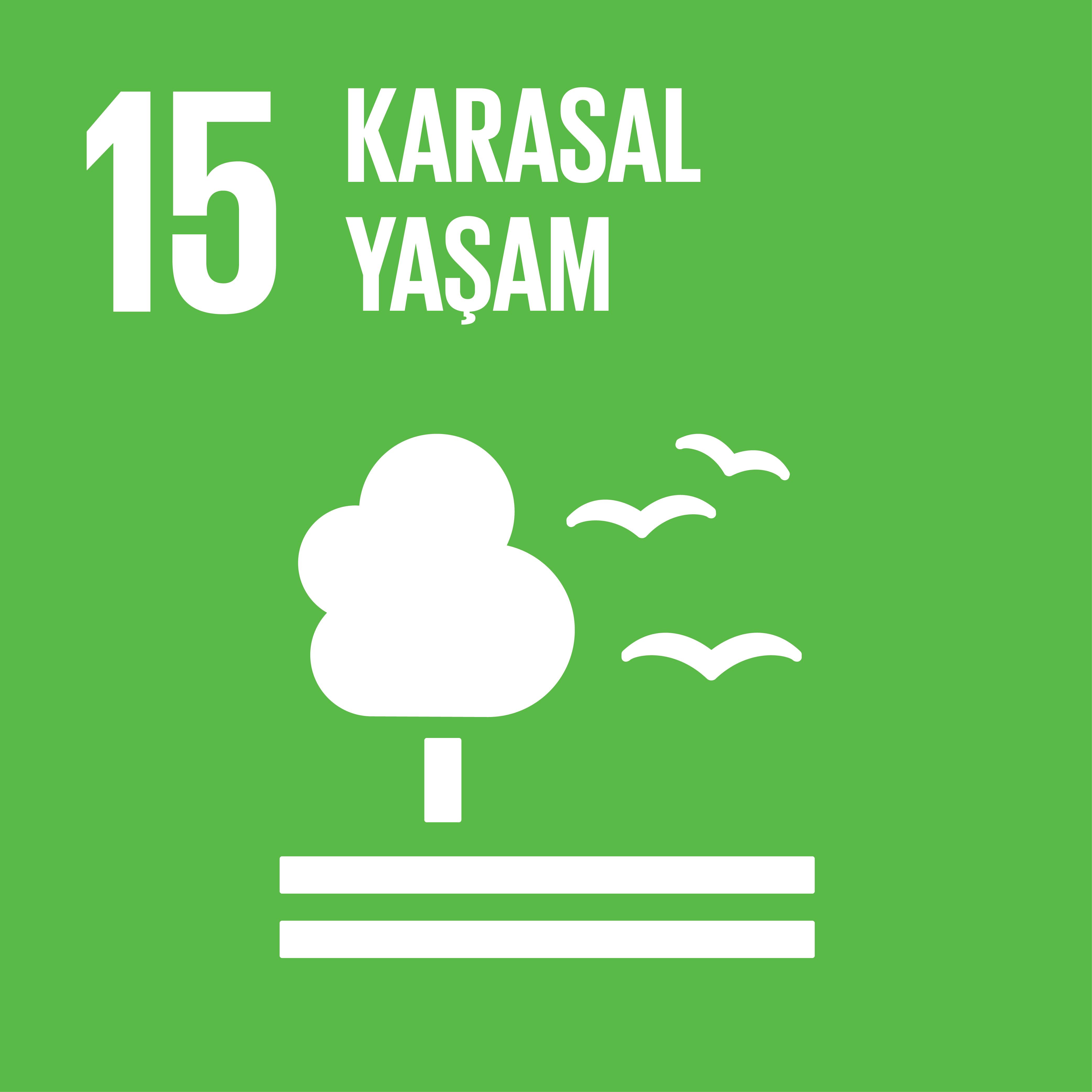 SDG 15 Sürdürülebilir Kalkınma Amacı 15 - Karasal Yaşam