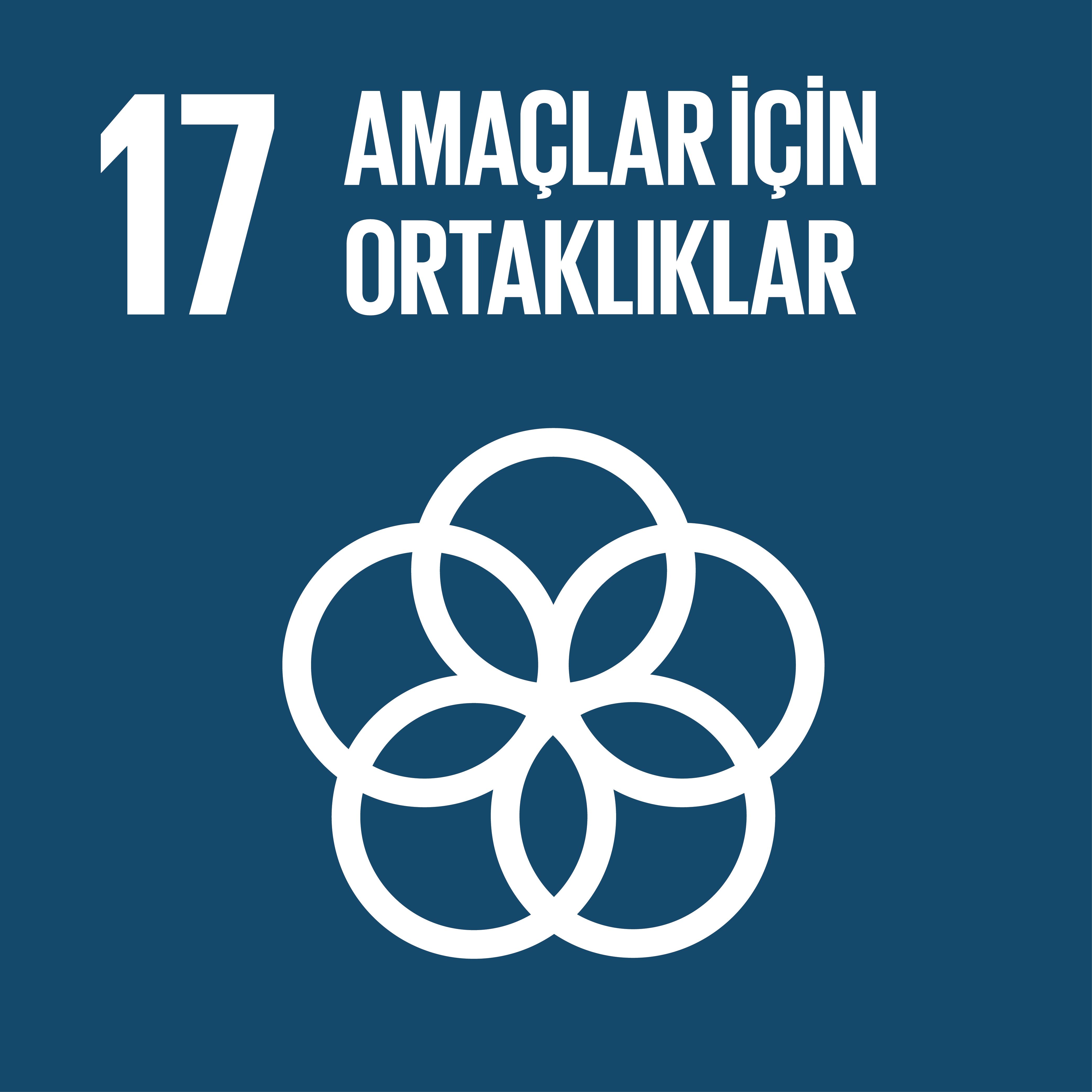 SDG 17 Sürdürülebilir Kalkınma Amacı 17 - Amaçlar için Ortaklıklar