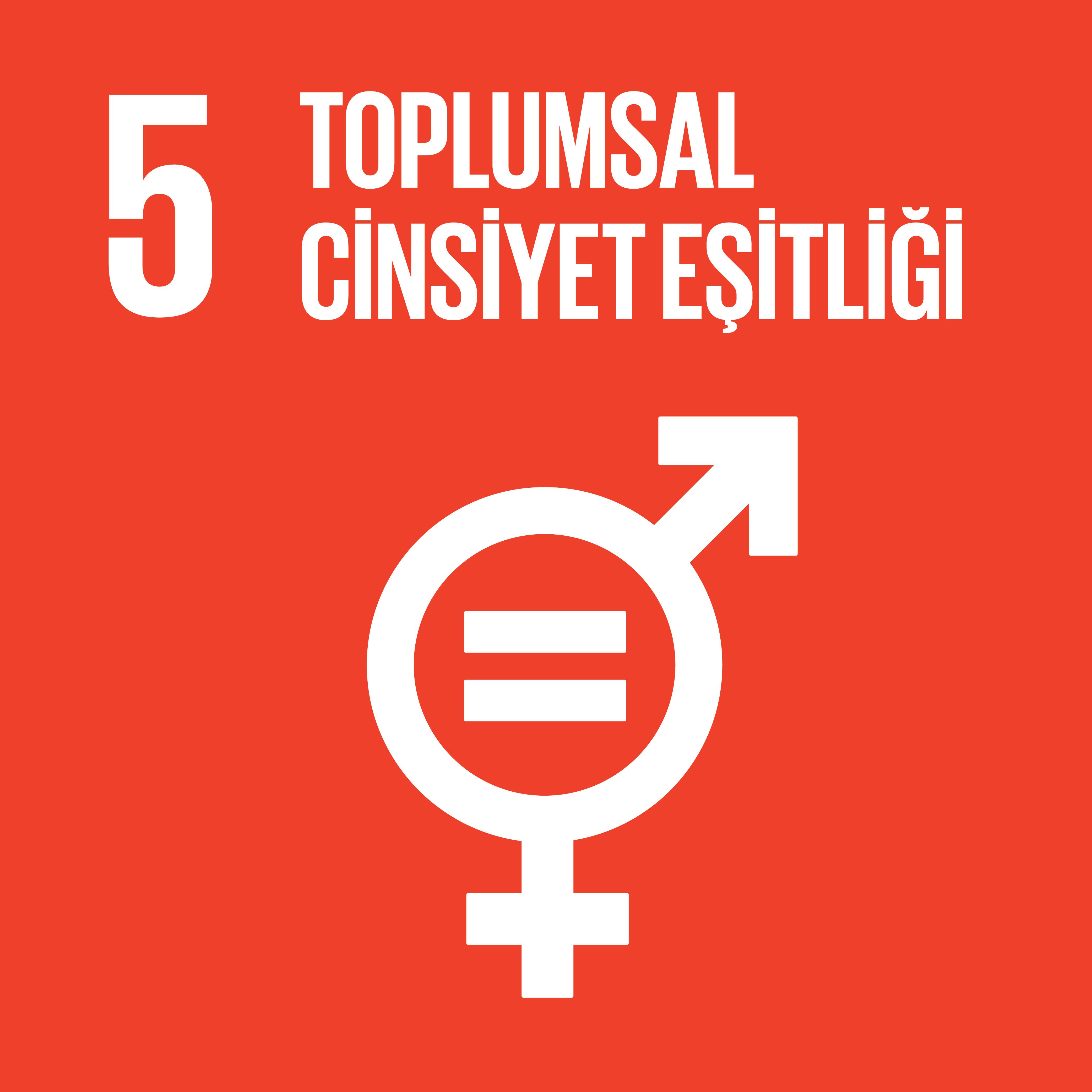 SDG 5 Sürdürülebilir Kalkınma Amacı 5 - Toplumsal Cinsiyet Eşitliği